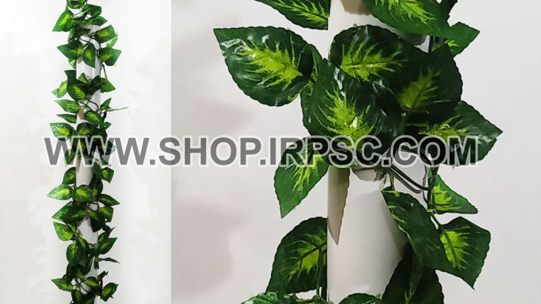 ریسه برگ مصنوعی فیتونیا | پیچک فیتونیا دو رنگ | گل آویز سبز