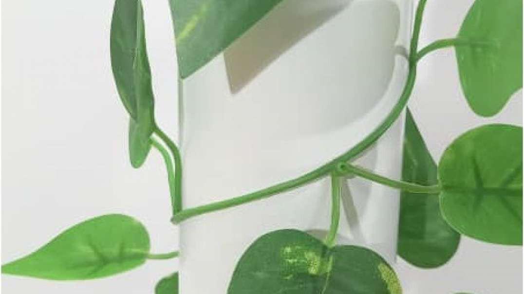 ریسه برگ مصنوعی مارانتا | گیاه رونده مصنوعی