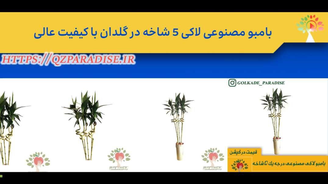 بامبو مصنوعی لاکی 5 شاخه در گلدان با کیفیت عالی