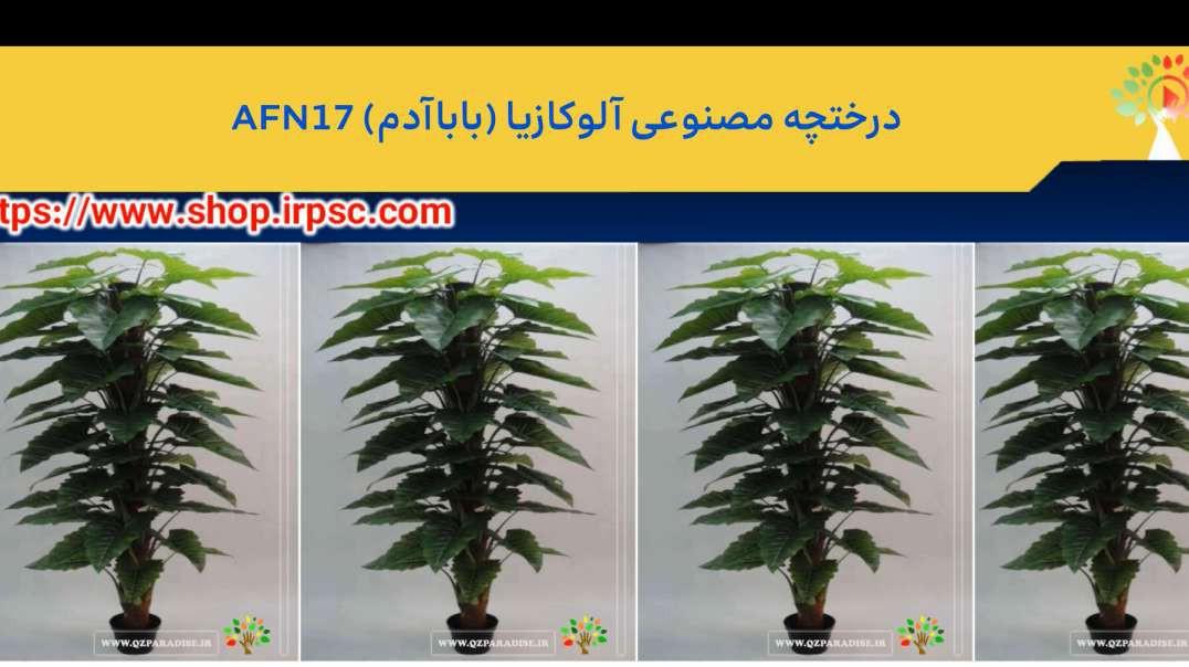درختچه مصنوعی آلوکازیا (باباآدم) AFN17.mp4