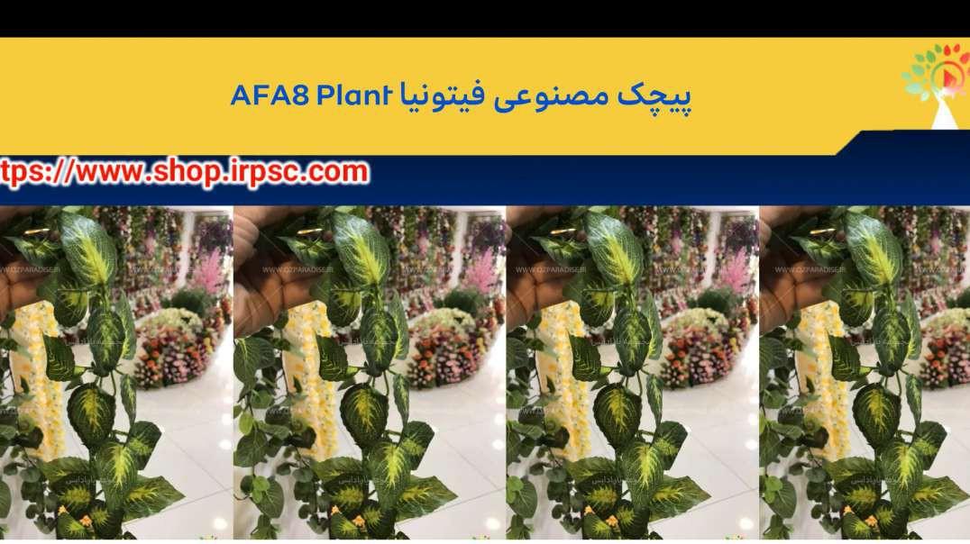 پیچک مصنوعی فیتونیا AFA8 Plant
