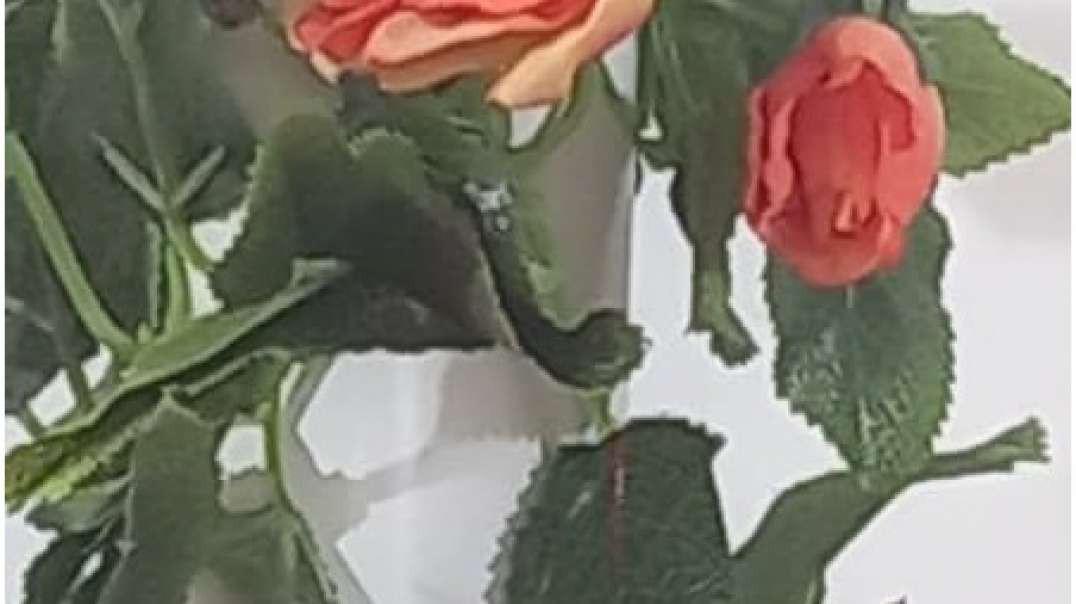 گل آویز مصنوعی رز | گیاه رونده رز | ریسه گلدار