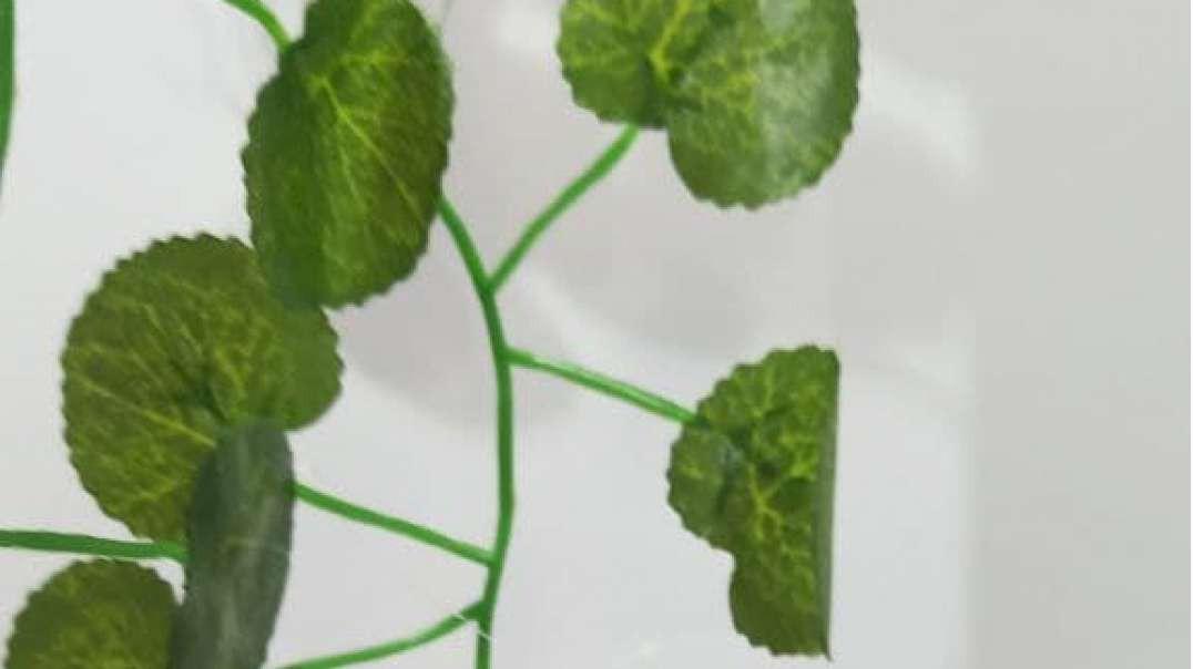 گیاه رونده پاپیتال مصنوعی | گل آویز پاپیتال مینیاتور