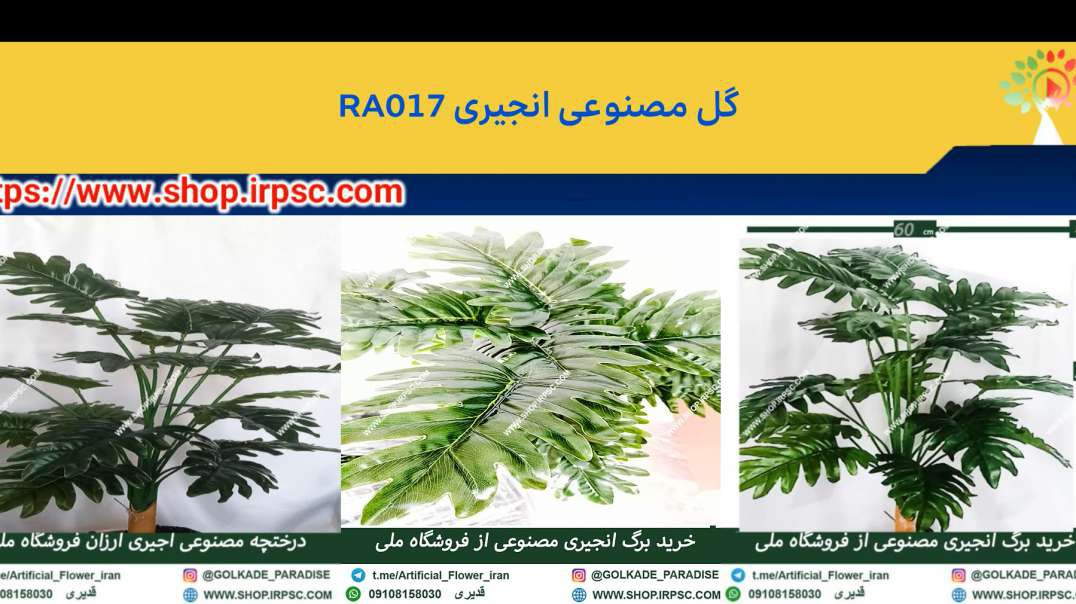 گل مصنوعی انجیری RA017 درختچه مصنوعی انجیری RA017  فروشگاه ملی